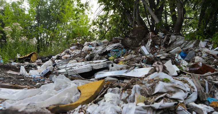 отходы птицефабрики