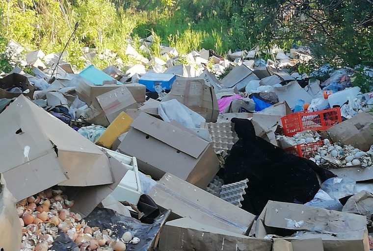 В Кургане нашли незаконную свалку с отходами птицефабрики. Жители задыхаются