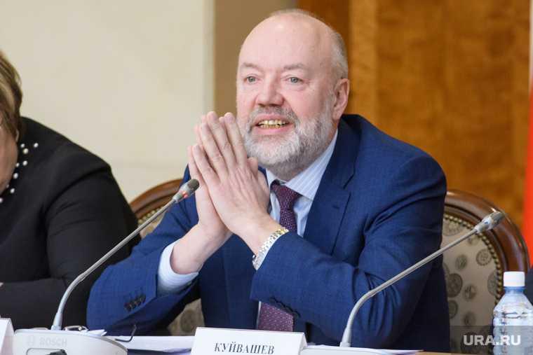 Павел Крашенинников разработка конституции