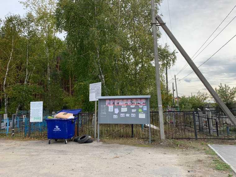 Тюменцев возмутила предвыборная агитация на кладбище. ФОТО