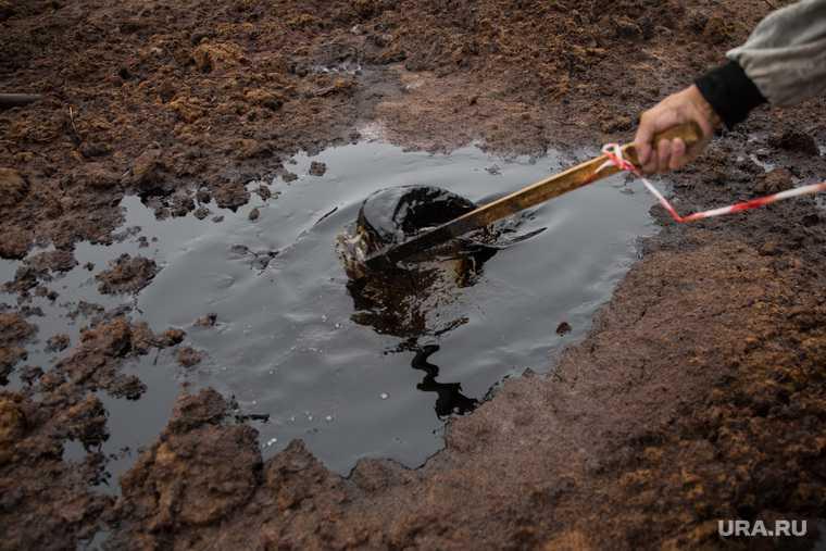 ЯНАО разлив нефти Надымский район Нумги экологическая катастрофа