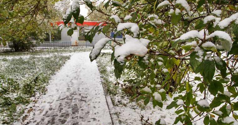 когда пойдет первый снег