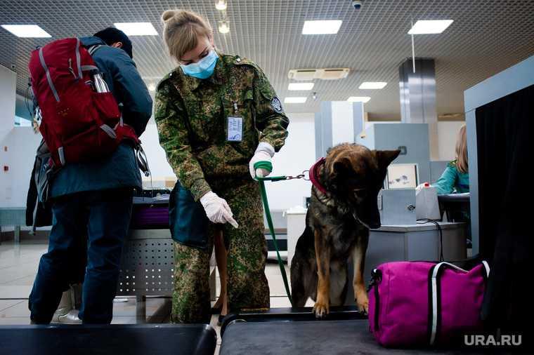 В Шереметьево обнаружили радиоактивную сумку