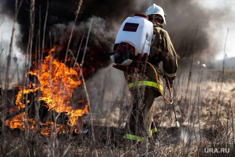 Гамово лесной пожар
