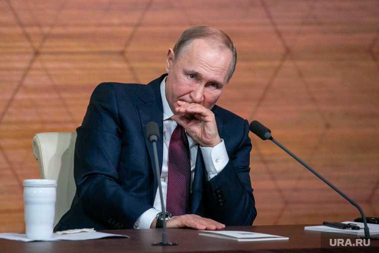 Владимир Путин выбьем зубы откусить россияне соцсети