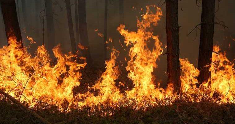 тюмень эвакуация пожары